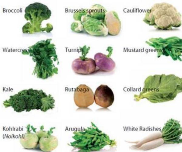 cauliflower cauliferious